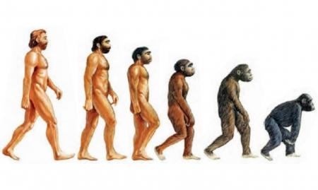 Теория эволюции - мировоззренческая угроза